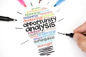 Opportunity analysis  in SaaS Model Software Business in Nepal